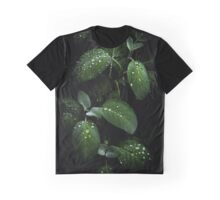 Sage  Graphic T-Shirt
