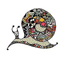 Art snail, ornate zentangle style Photographic Print