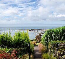 Lyme Regis Overview by Susie Peek