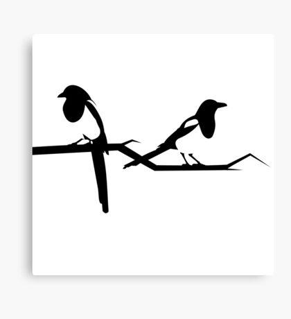 Magpies Canvas Print