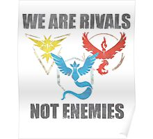 Rivals, not enemies Poster