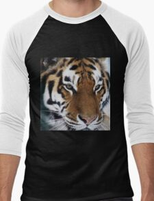 Siberian Tiger - unique photo design apparel and gifts Men's Baseball ¾ T-Shirt