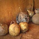 Gourds by Kenneth Hoffman