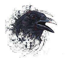 Crow Art Photographic Print