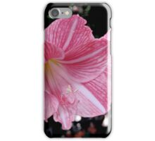 Red Stripped Lily iPhone Case/Skin