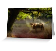 Friendly bull in the morning mist Greeting Card