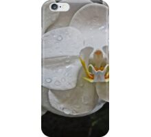 White Dream Orchid iPhone Case/Skin