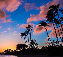 Kawaikui Sunset 3 by Leigh Anne Meeks