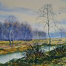 Stream in Flood on Strensall Common by Glenn  Marshall