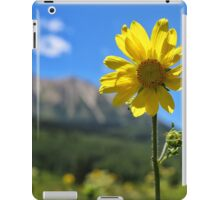 In the Shadow of the Rockies iPad Case/Skin