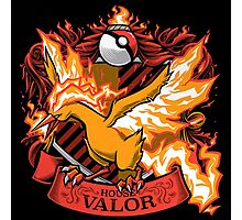 HOUSE VALOR - TEAM VALOR Photographic Print