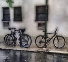 Bicycles in the Rain by RC deWinter