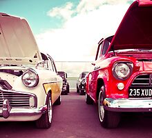 Two Great Cars by SamsonDavid