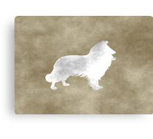 Grunge Border Collie Canvas Print