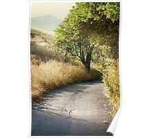 We'll walk this path together Poster