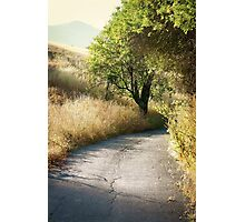 We'll walk this path together Photographic Print