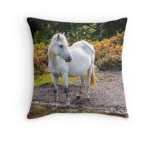 Horse Magic in reflection Throw Pillow