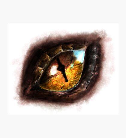 Fire Dragon Eye Photographic Print