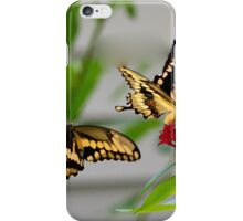 Tiger Swallowtail Courtship iPhone Case/Skin