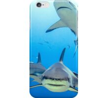 Caribbean Reef Sharks iPhone Case/Skin