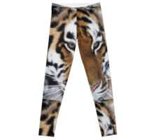 Siberian Tiger - unique photo design apparel and gifts Leggings