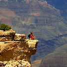 """Canyon Thoughts"" by David Lee Thompson"
