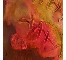 Mixed media 06 by rafi talby Photographic Print