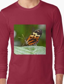 Orange and Yellow Butterfly Long Sleeve T-Shirt
