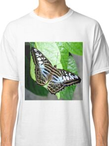 Blue Tiger Butterfly Classic T-Shirt