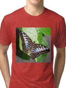 Blue Tiger Butterfly Tri-blend T-Shirt