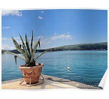 Porto Montenegro Poster
