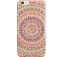 Mandala 124 iPhone Case/Skin
