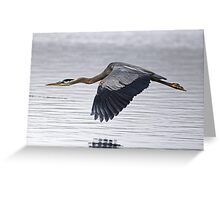 Great Blue Heron Over Still Waters Greeting Card