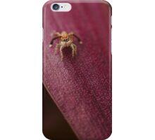 I spi(der) you iPhone Case/Skin