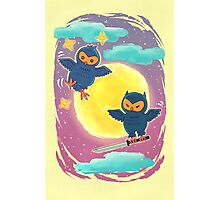 Ninja Owls Photographic Print
