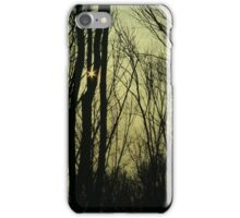Sun in Trees iPhone Case/Skin
