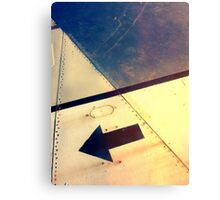 flying right Canvas Print