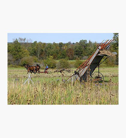 Farming the land Photographic Print