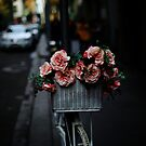 Flower Basket by MichaelCouacaud