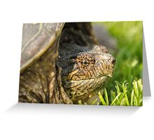 Big Snapping Turtle 2 Greeting Card