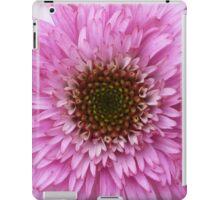 Dwarf cone flowers iPad Case/Skin