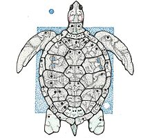 Turtle with a Story Photographic Print