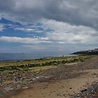 English North Sea Beach In Summer by Francis Drake