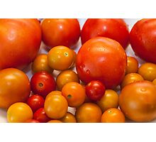 Little tomatoes Photographic Print