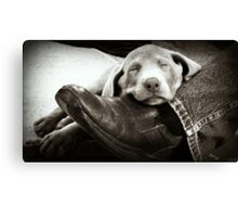 "OUR SILVER LAB ""GRACIE"" Canvas Print"