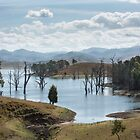 Lake St Clair, Singleton NSW Australia by Allport Photography