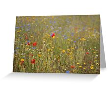 A field of wild flowers Greeting Card