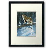 The Amur Leopard Framed Print