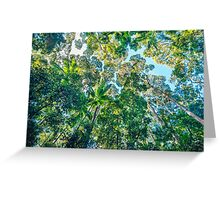 Valley of the Giants, Fraser Island Greeting Card