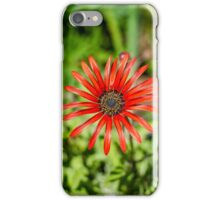 Petals Of Red iPhone Case/Skin